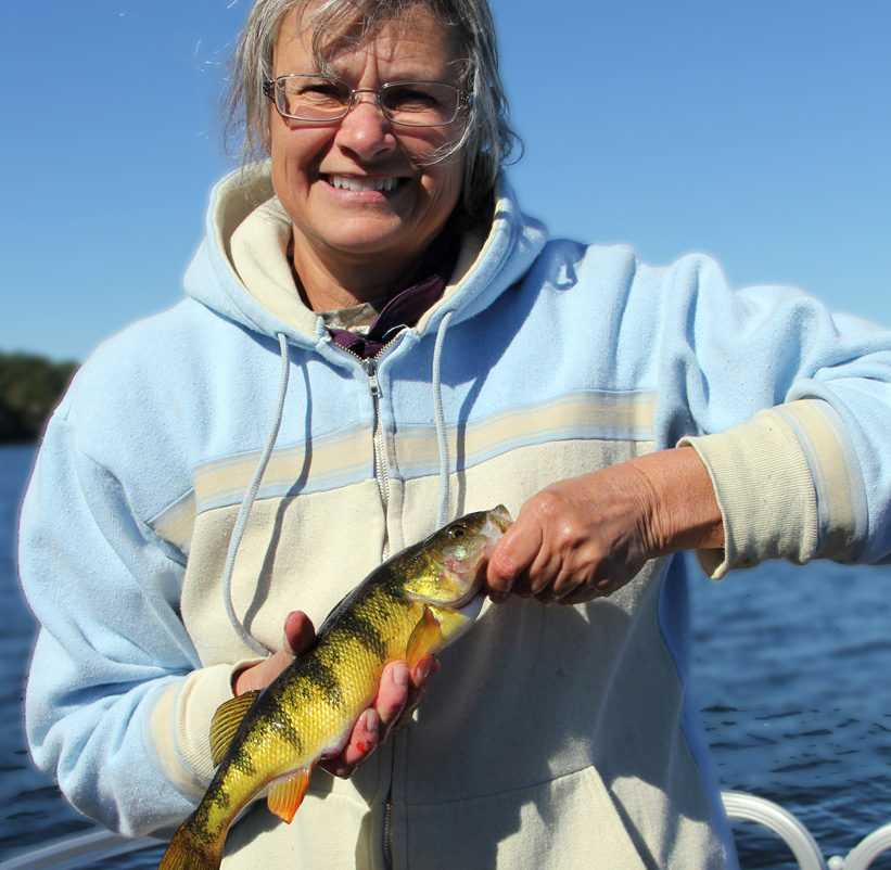Woman displaying catch of yellow perch.