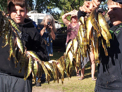 Boys displaying prize-winning catch of yellow perch.