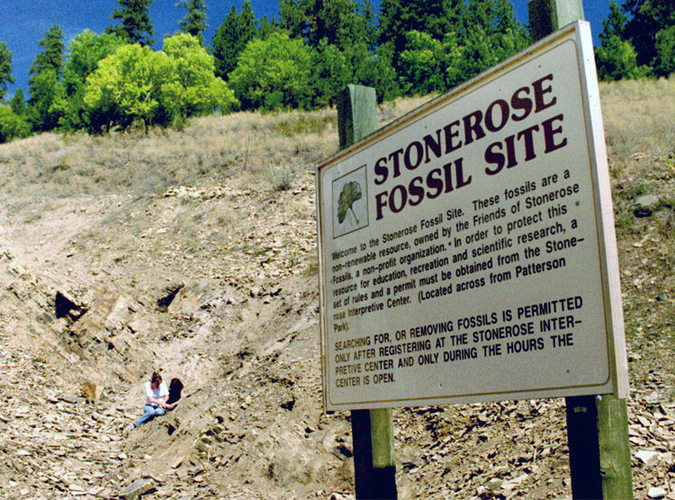 Photo of Stonerose Fossil Site