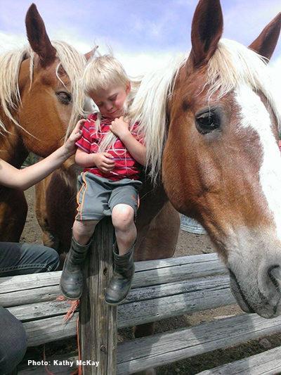 Small boy strokes the mane of a gentle palomino.  K-Diamond-K Guest Ranch. Photo: Kathy McKay