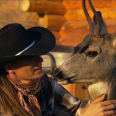 Kathy McKay pets young, rescued buck deer.  K-Diamond-K Guest Ranch.